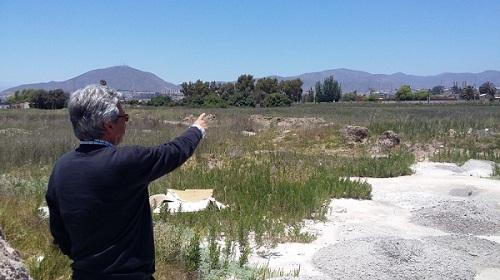 Dos hectáreas del ex-club hípico recibirá el Club de Tenis Coquimbo en comodato